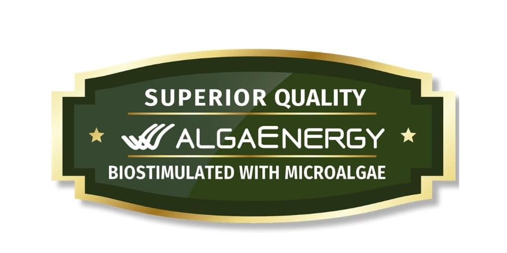 AlgaEnergy desarrolla un sello que certifica la máxima calidad de los productos finales