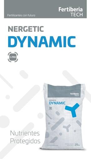 Nergetic Dynamic L1 292*510 18-24/1
