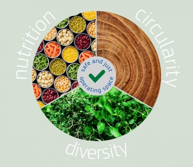 Un informe de la UE insta a reformar los sistemas alimentarios para impulsar la recuperación
