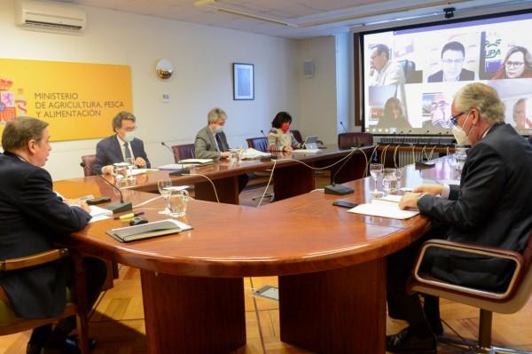 Planas calcula en 600 M€ el impacto positivo de la reducción general del IRPF agrario de 2020