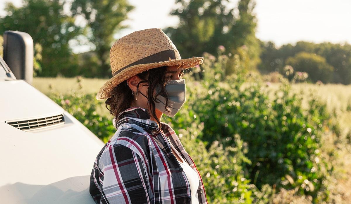 La Reserva nacional distribuyó casi 13,6 M€ de derechos de pago básico a 2.922 jóvenes y nuevos agricultores de la campaña PAC 2020