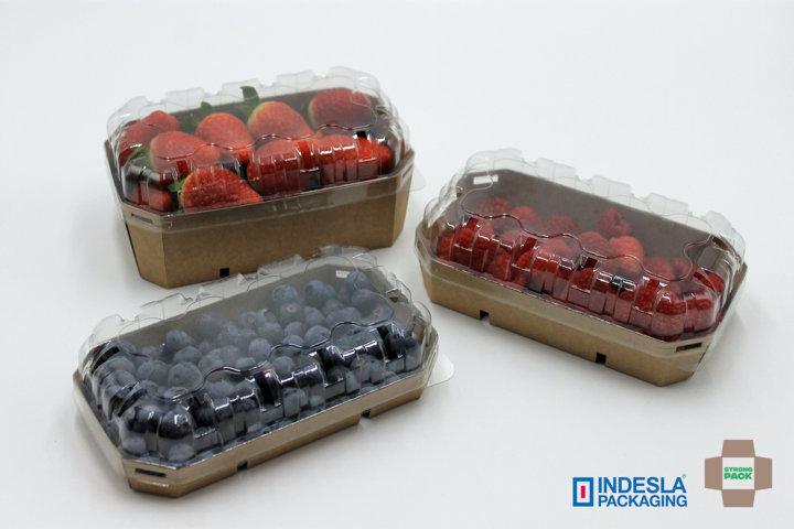 20210203 envases-carton-rpet-strong-pack-indesla (FILEminimizer)