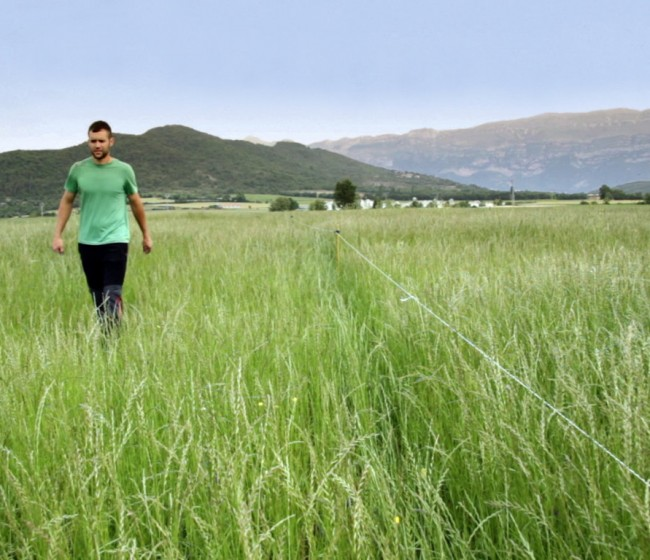 Estudio EIT Food: más del 80% de los consumidores españoles confían en los agricultores