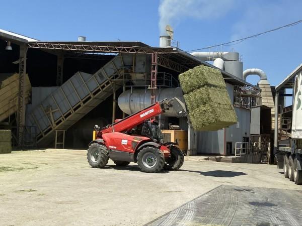 La producción estimada de alfalfa deshidratada se situará en 1,45 Mt en la campaña 2020/21