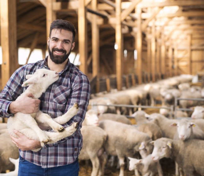 Los veterinarios reivindican su principal papel en la gestión del bienestar animal
