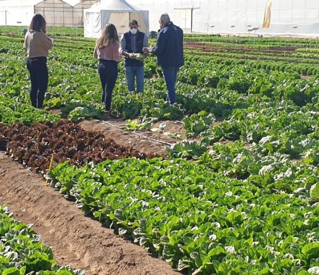 Murcia: Jornadas de puertas abiertas de los centros de investigación