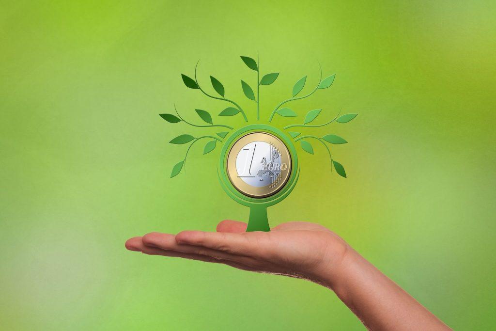 SAECA avaló en 2020 más de 6.000 operaciones de financiación por más de 109 M€ a las explotaciones agrarias