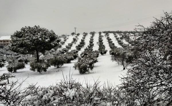 La UE lanza su nueva estrategia de adaptación al cambio climático