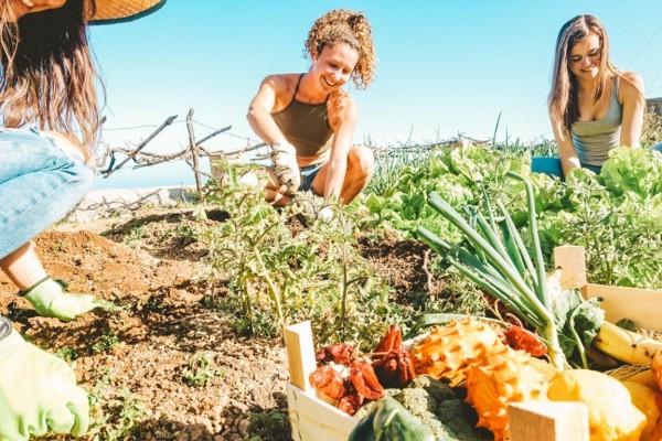 La asociación de mujeres rurales Fademur se une al programa Airbnb Rural
