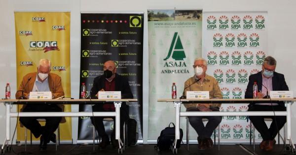 El sector agrario andaluz decide iniciar un periodo indefinido de movilizaciones