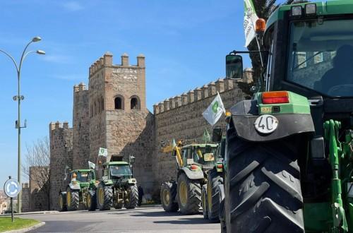Tractorada en Toledo para reclamar un plan para el olivar afectado por Filomena