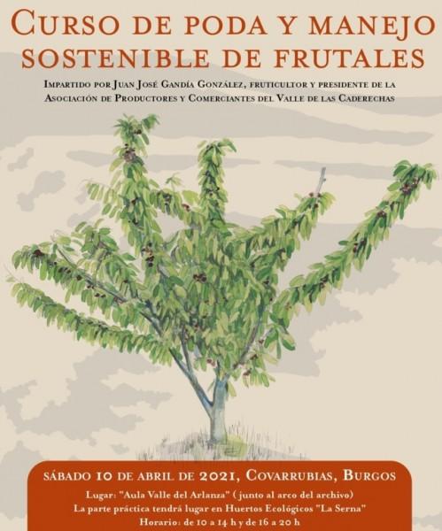 Curso de Poda y Manejo Sostenible de Frutales en Covarrubias