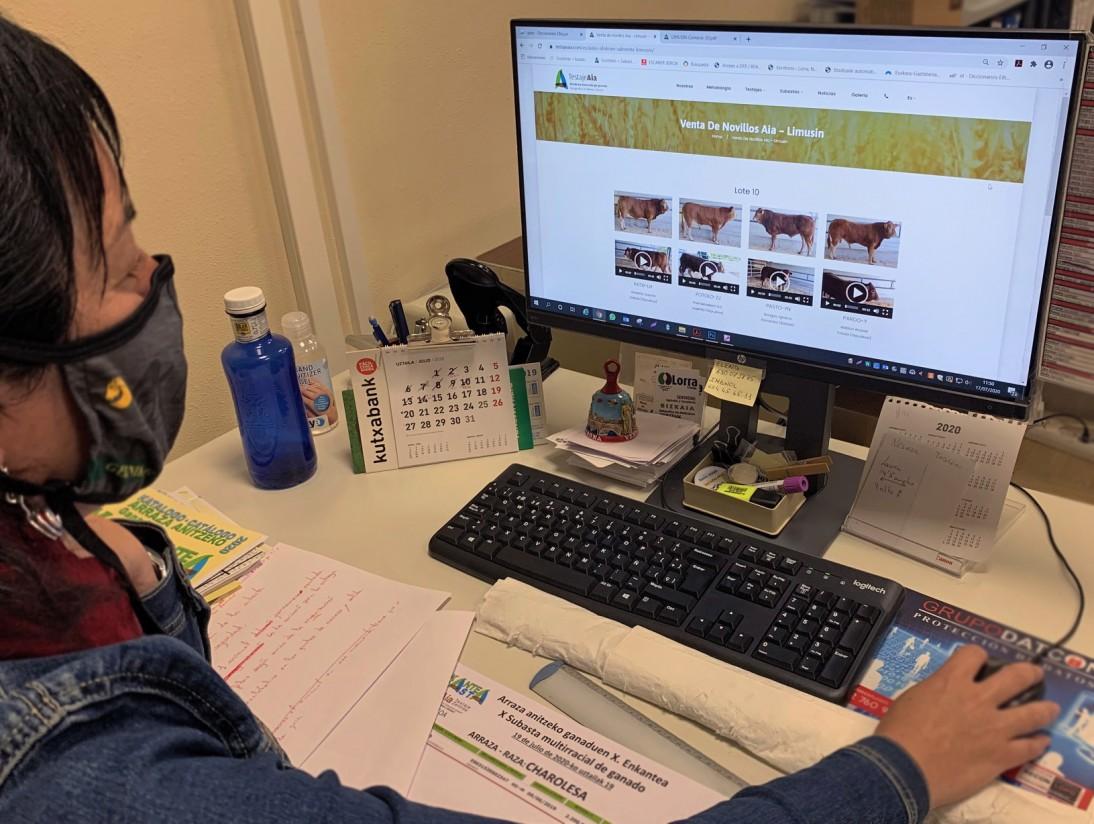 Lorra S. Coop. crea una plataforma de subasta online de ganado