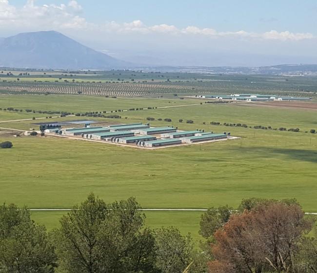 Cefusa promueve grupos de mejora para reducir el consumo de agua en sus granjas