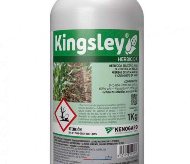 Kinsgley, el nuevo herbicida para maíz de Kenogard