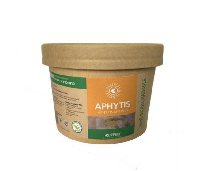 Koppert presenta el nuevo envase biodegradable de Aphytis