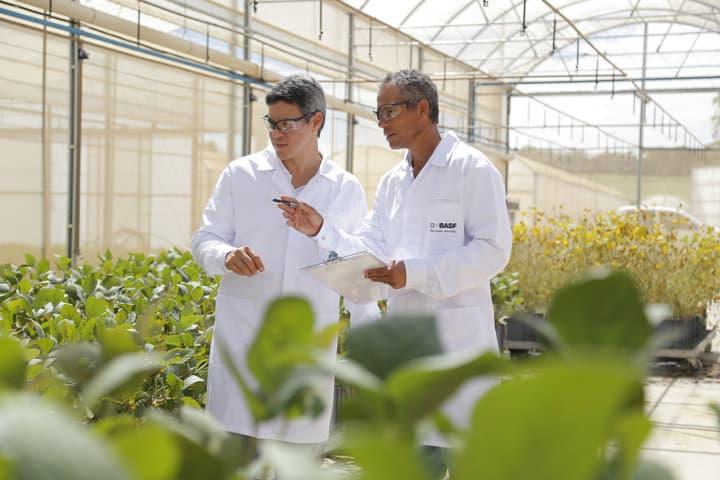 Basf invirtió 840 millones de euros en I+D de Soluciones Agrícolas en 2020