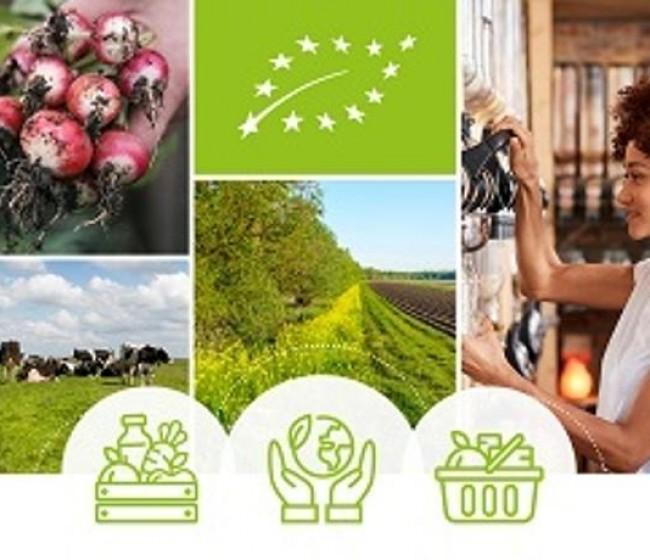 Bruselas presenta su Plan de Acción para desarrollar la producción ecológica en la UE de aquí hasta 2030