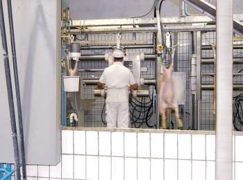 Cárnico: el real decreto de videovigilancia de mataderos podrá estar en vigor a finales de este año
