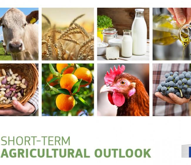 """Bruselas destila optimismo en su informe sobre """"Perspectivas a corto plazo de los mercados agrarios en la UE-27"""""""