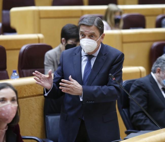 """Planas apuesta por un plan de lucha integral contra el """"cotenet"""" en cítricos y rechaza el uso del """"metil-clorpirifos"""""""