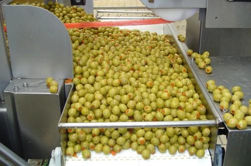 El sector de la aceituna de mesa pierde más de un 11% de su mercado, según Cooperativas