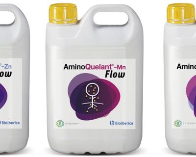 Bioibérica lanza la gama AminoQuelant Flow con L-α-aminoácidos para el estrés carencial