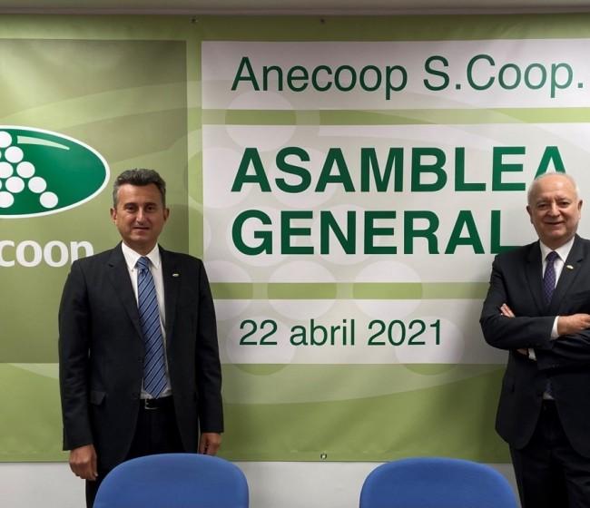 Anecoop obtiene una facturación récord de 770,5 M€ con menor volumen comercializado