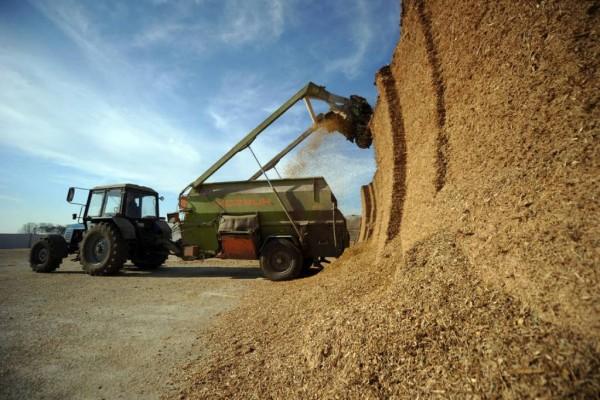 Los precios de materias primas y piensos siguieron presionando al alza los costes del sector ganadero en marzo