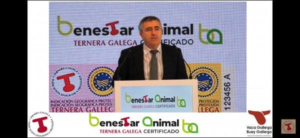 La IGP Ternerna Gallega crece en en un mercado donde ya se comercializa con certificado de bienestar animal