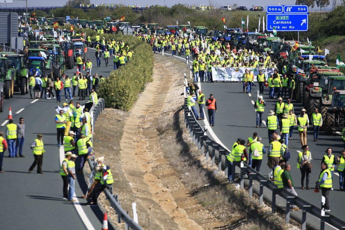 Agricultores y ganaderos se manifestarán el día 15 en Sevilla contra la convergencia «brusca» de las ayudas PAC