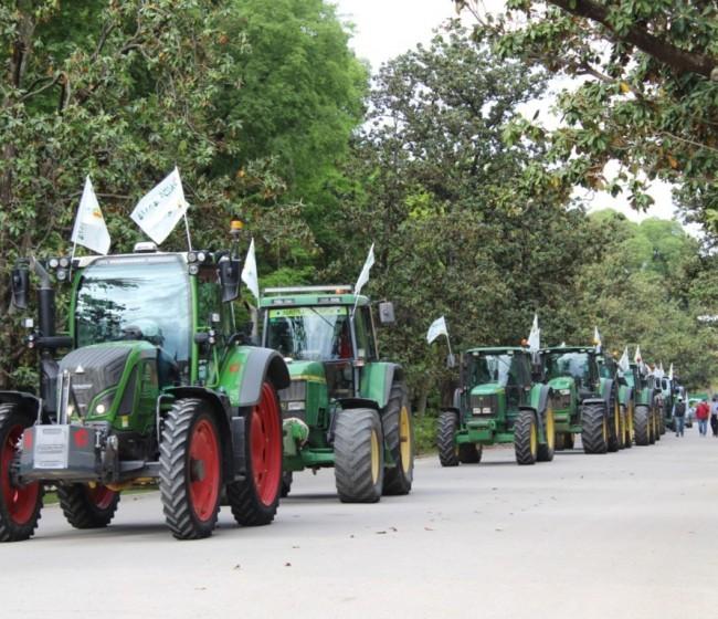 """Unos 600 agricultores se concentran en Sevilla contra la convergencia """"brusca"""" de la PAC"""