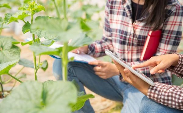 El MAPA ultima proyecto de RD sobre ayudas para estancias formativas de jóvenes agricultores en explotaciones modelo