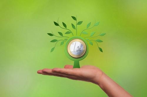 El MAPA permite a las CC.AA. prorrogar hasta el 31 de mayo el plazo límite de la Solicitud Única de la PAC 2021