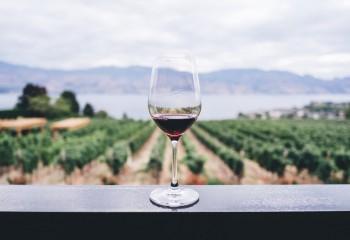 Las organizaciones profesionales de Francia, Italia y España piden un apoyo firme de la UE y los EE.MM. al sector vitivinícola europeo