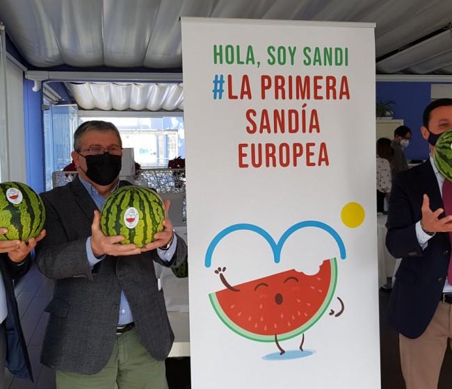 Coexphal y Hortiespaña lanzan SANDI, «la primera sandía europea»
