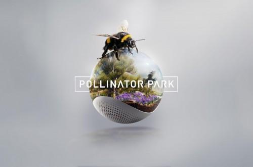 Bruselas señala que la UE debe esforzarse más frente al declive de insectos polinizadores silvestres