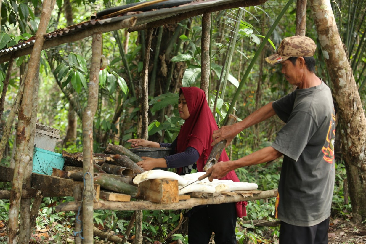 Cadena de suministro de caucho sostenible_Continental_GIZ Canopy Indonesia
