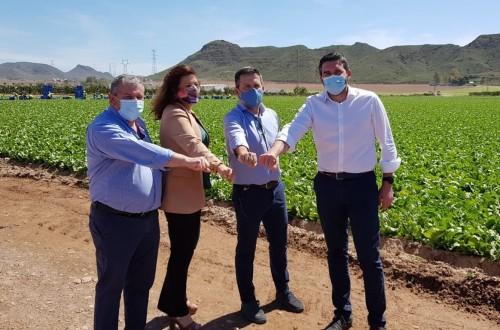 Proexport y Coexphal se unen para defender los trasvases y los valores de la horticultura del sureste