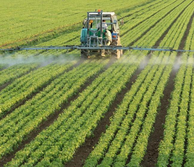 Organizaciones europeas exigen una evaluación exhaustiva antes de reducir un 50% el uso de plaguicidas en la UE