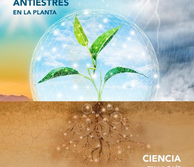 Seamac Rhizo, el nuevo bioestimulante de FMC potenciador del sistema radicular
