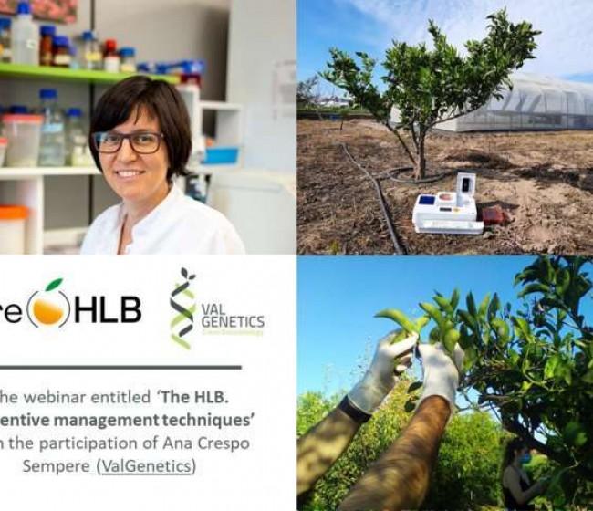 ValGenetics presenta sus avances en detección temprana y kits de detección contra el HLB