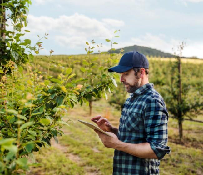 Farmable, la app gratuita para la gestión de cultivos leñosos, llega a España
