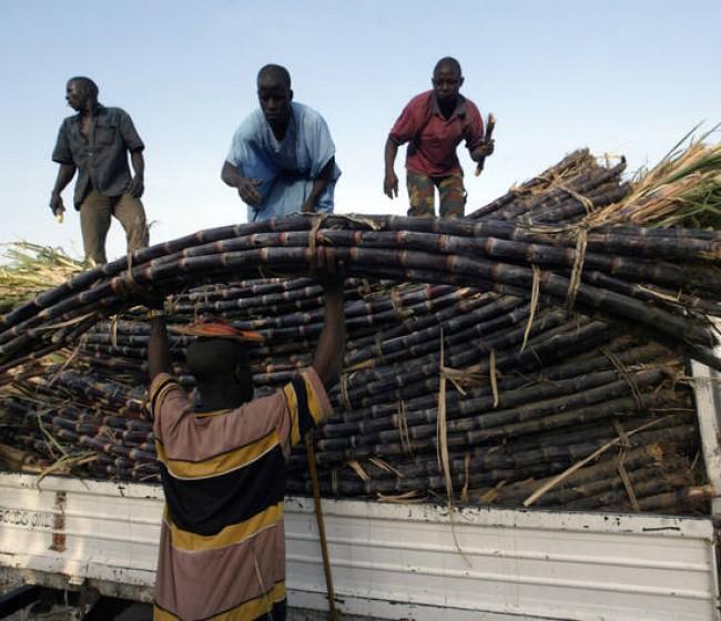 Los precios mundiales de los alimentos básicos del Índice FAO siguieron escalando en abril por onceavo mes consecutivo