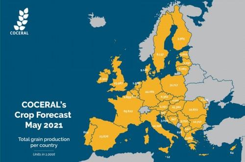 El comercio europeo prevé más trigo y maíz en la UE en la próxima campaña 2021/22