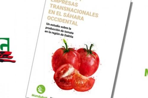 """COAG y Mundubat denuncian la """"megápolis del tomate"""" que Marruecos construye ilegalmente en Dakhka, Sáhara Occidental"""