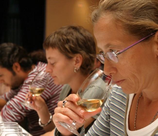 ICEX incorpora a la OIVE en el plan de formación internacional de los Vinos de España