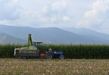 El Índice FAO de precios mundiales de los alimentos básicos aceleró su ritmo de subida en mayo