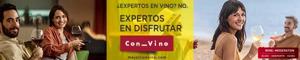 OIVE_EXPERTOS_SOFA-PLAYA_600x120px
