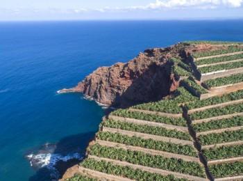 El Gobierno hace más accesible la constitución de OPFH en islas de Baleares y Canarias